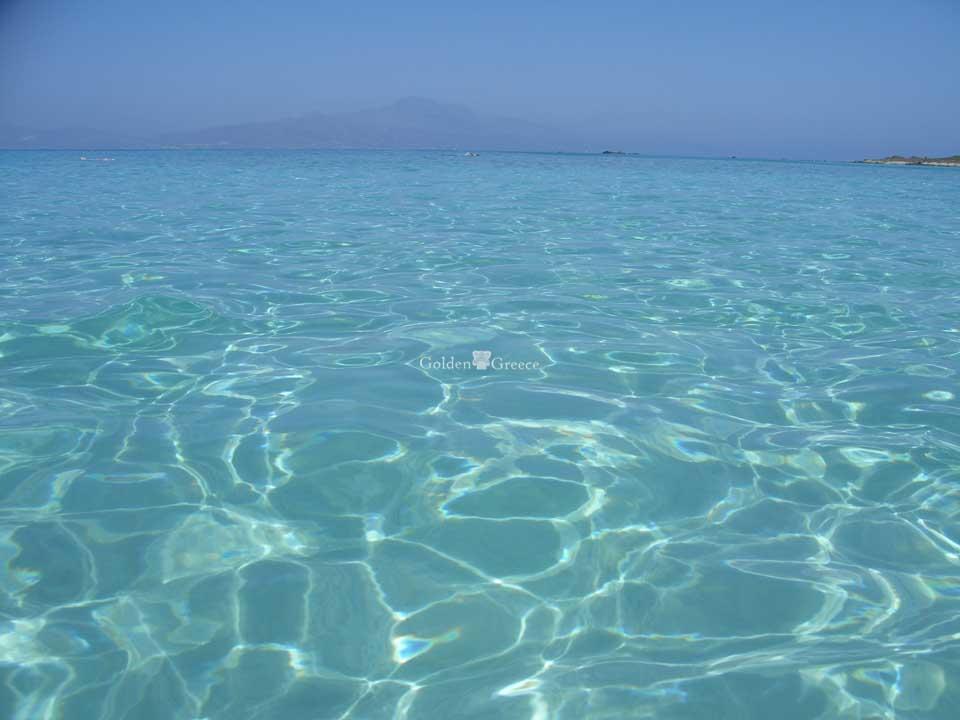 Χρυσή (Chrysi) | Το χρυσαφένιο νησί της Κρήτης | Κρήτη | Golden Greece