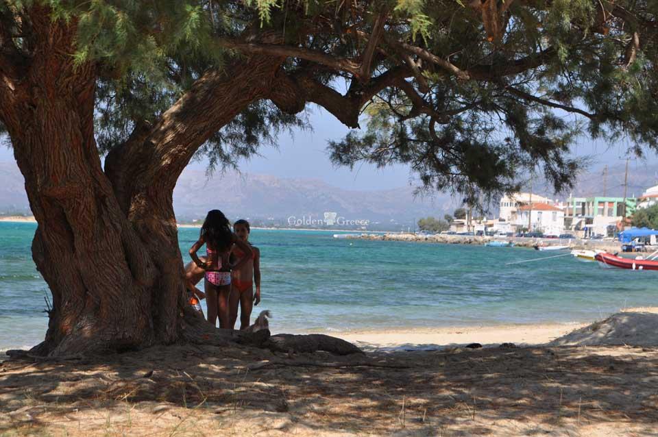 Ελαφόνησος (Elafonisos) | Η χερσόνησος που έγινε νησί | Ιόνια Νησιά | Golden Greece