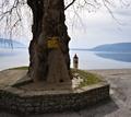 Καστοριά - Η αρχόντισσα της Μακεδονίας - Φωτογραφίες