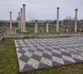 Πέλλα - Η αρχαία πρωτεύουσα της Μακεδονίας - Φωτογραφίες