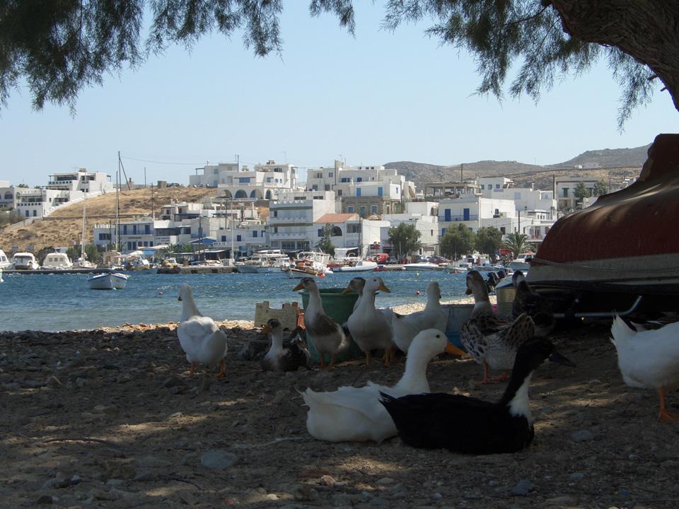 Σέριφος | Ανακαλύψτε τη Σέριφο | Golden Greece