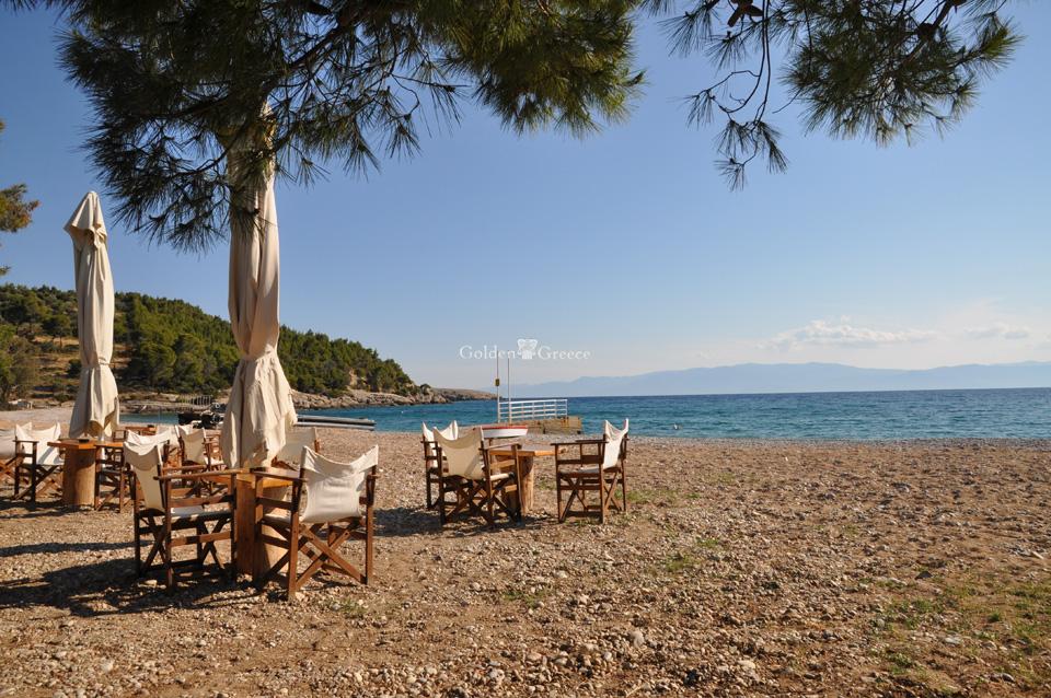 Πληροφορίες | Σπέτσες | Αργοσαρωνικός | Golden Greece